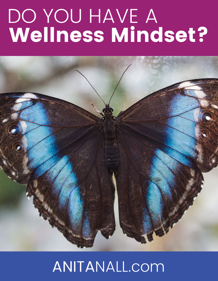 Do you have a wellness mindset?